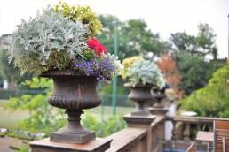 Vacanze studio a Londra e Canterbury: giardino del college