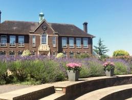 Vacanze studio a Salisbury: casa