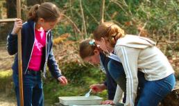Vacanze studio e Beaulieu: attività per bambini all'aria aperta